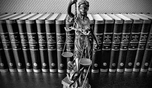 Anwalt Strafrecht Revision Rostock
